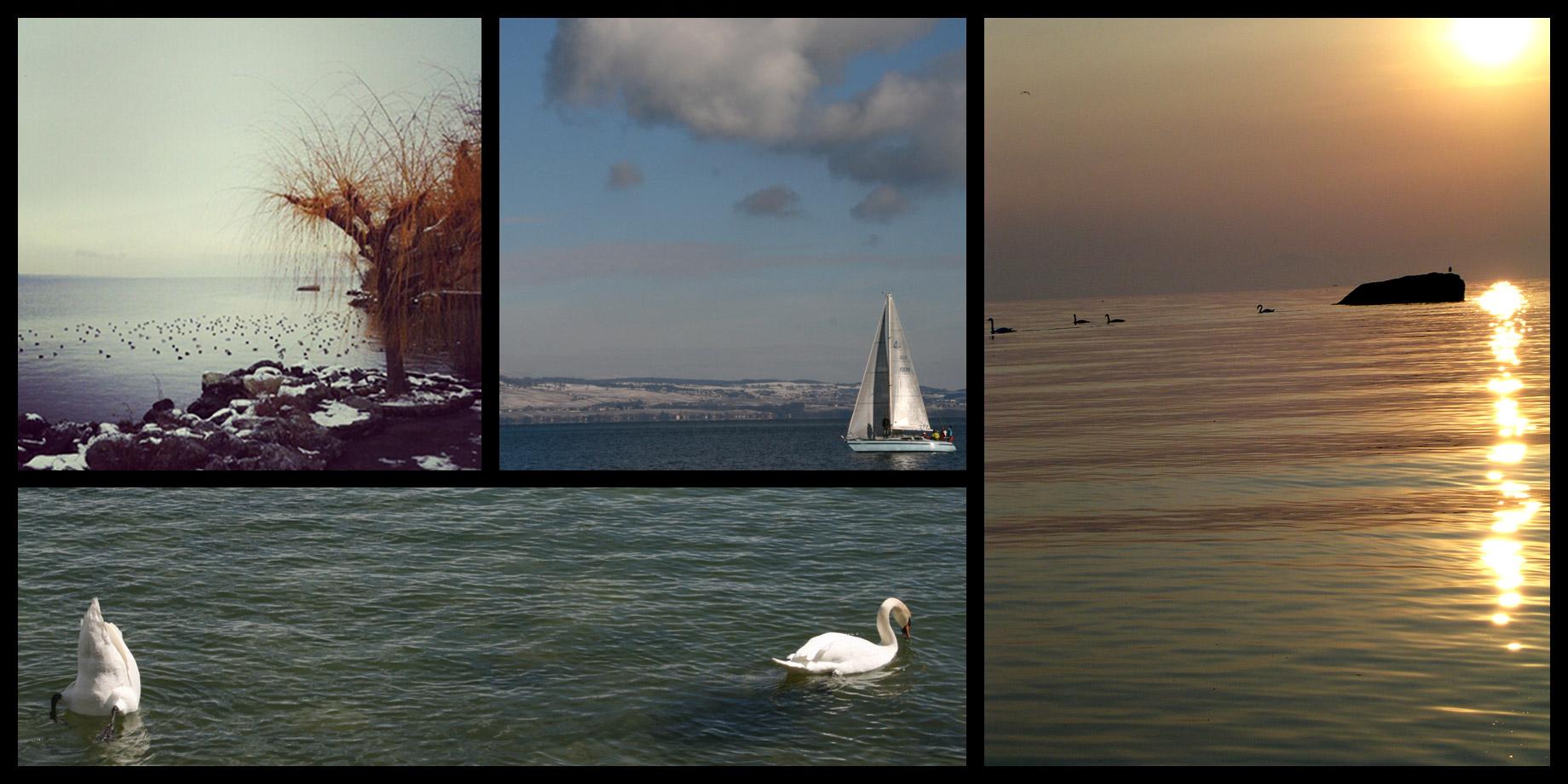 Lake Geneva - Lake Léman